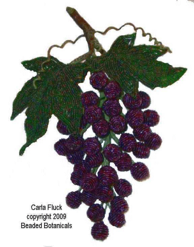 Medium Purple Grapes